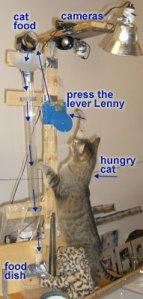 LennysCatFeeder
