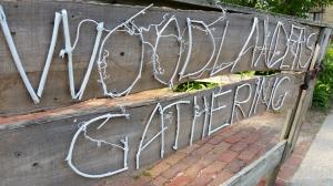 woodlanders2